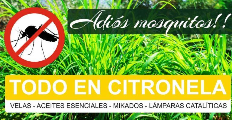 ¿Cansad@ de los mosquitos este verano? ¡Rodéate de Aroma a Citronela!